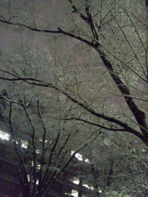 20180122雪2