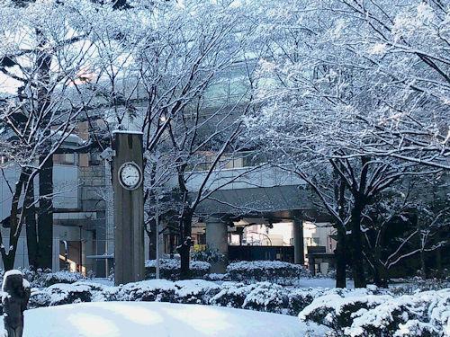 20180123雪3