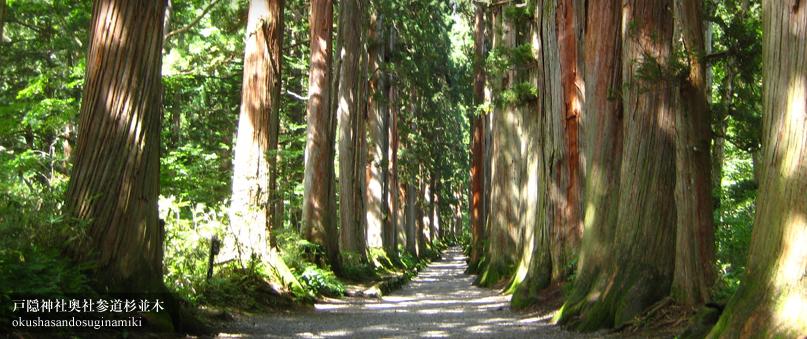 【大人の遠足】夏至の戸隠・善光寺ツアー