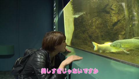 釣りビジョン【公式】釣りはじめます! シーズン2 #61 埼玉編 4-1