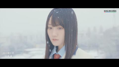 小倉 唯「白く咲く花」MUSIC VIDEO(Short ver.)