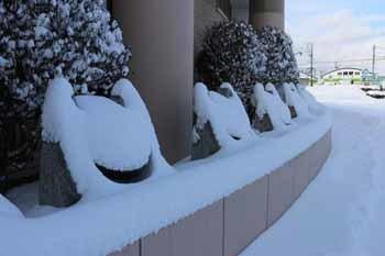 20180206_雪の新冠3