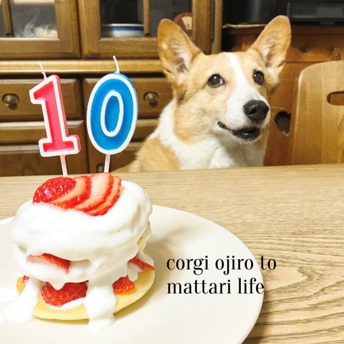 10ooji1.jpg