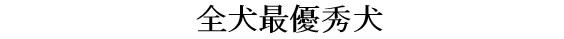 20171112三重CH展02