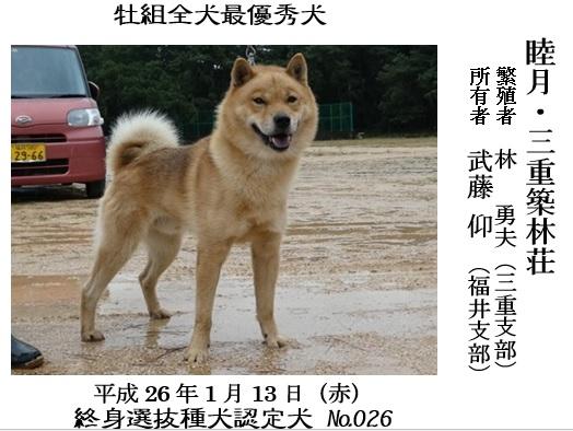 20171112三重CH展04