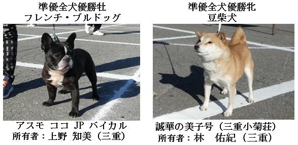20171112三重CH展16