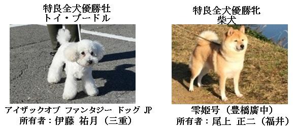 20171112三重CH展17