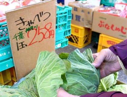天候不順で野菜が高騰→ パヨク「アベノミクスの結果がこれなのか」「ネトウヨが自民に票入れた結果がこれですよw」