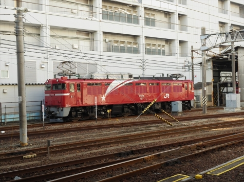 JR貨物 EF81 98 電気機関車【水戸駅】