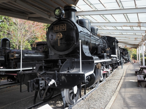 8620号 蒸気機関車(8620形)【青梅鉄道公園】