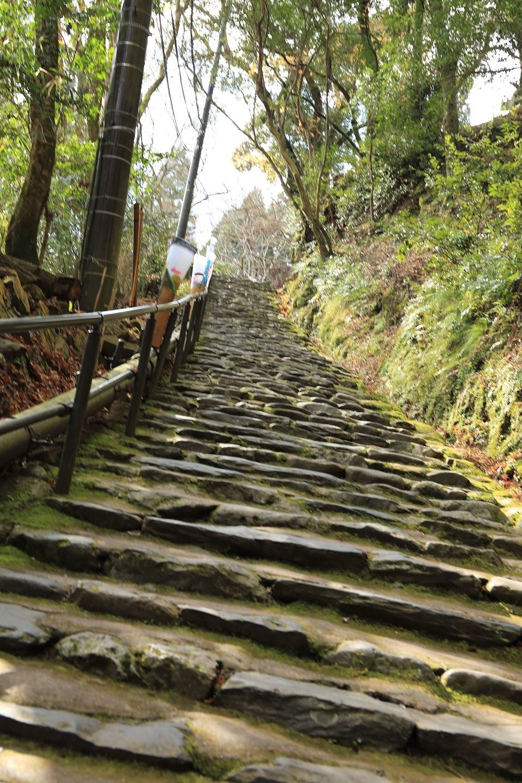 ブログ きつい勾配の階段を登る.jpg