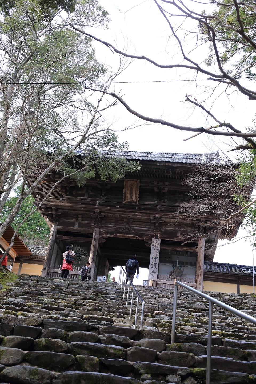ブログ 疲れてやっと来ました神護寺.jpg