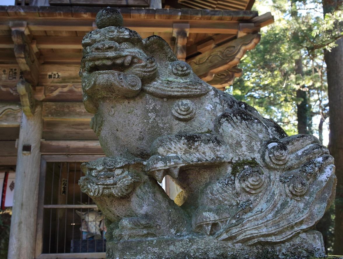 ブログ 阿吽像の狛犬(阿).jpg