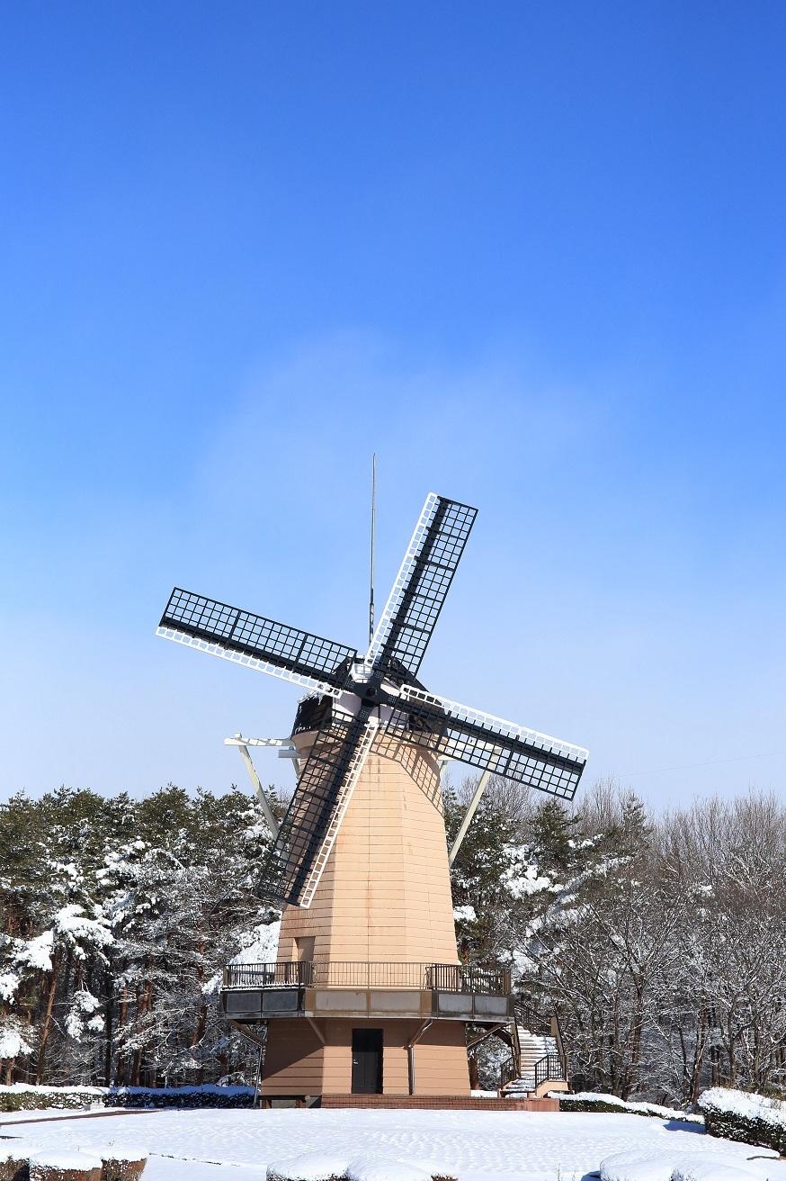 2018 1 3ブログ 風車.jpg
