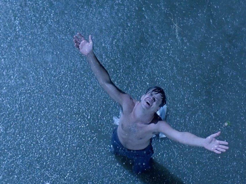 robbins-in-the-rain.jpg