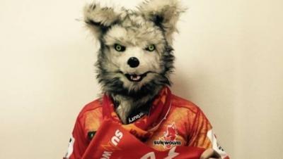 Sunwolves'_Wolf_Mascot