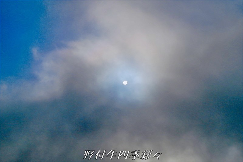 s-Ca-20180117-100348-0.jpg