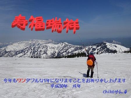 DSC02496 - コピー