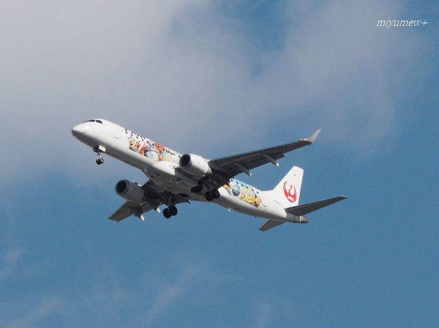 JAL180124