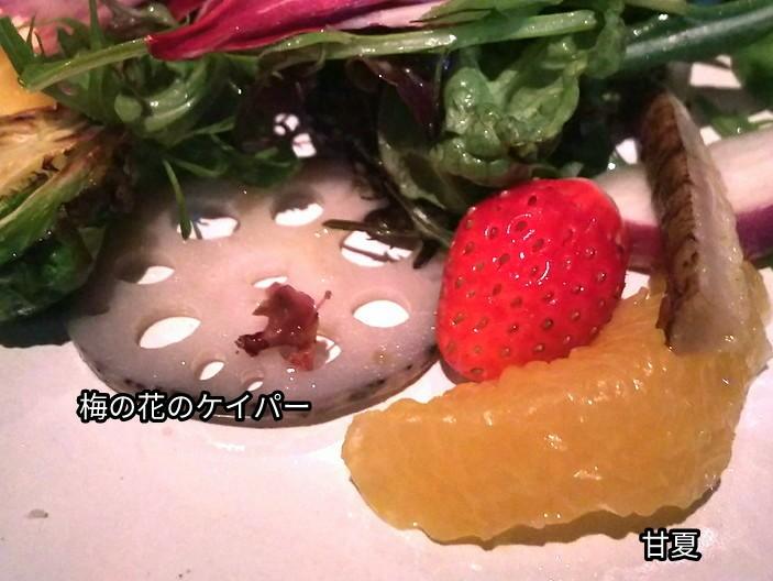 梅の花のケイパー