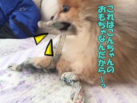 image11801280103.jpg