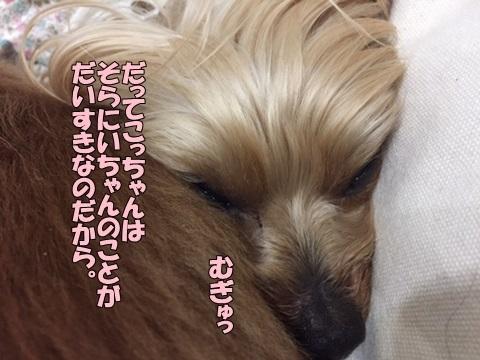 image218021101.jpg