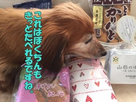image318021401.jpg