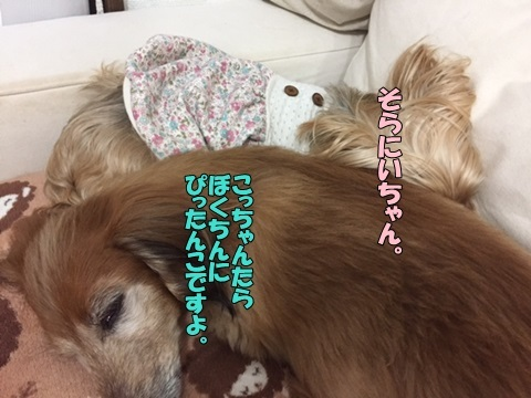 image418021101.jpg