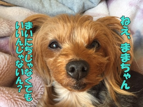 image611270203.jpg