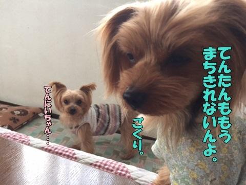 image612170404.jpg