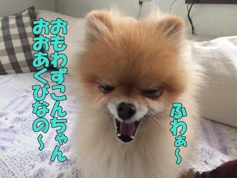 image61801230101.jpg
