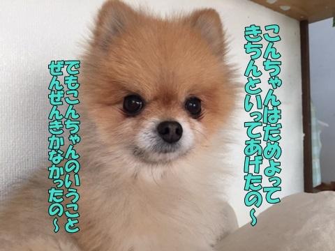 image701010103.jpg