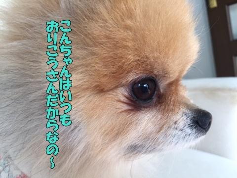 image712280203.jpg