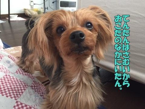 image71801300101.jpg