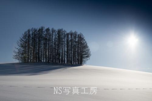 _DSY4858.jpg