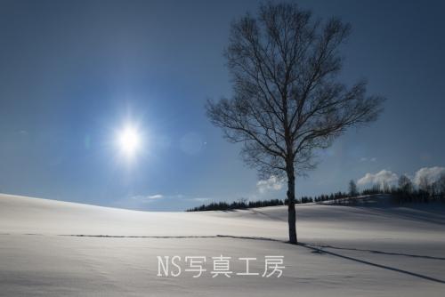 _DSY4877.jpg