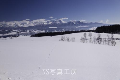 _DSY5059.jpg