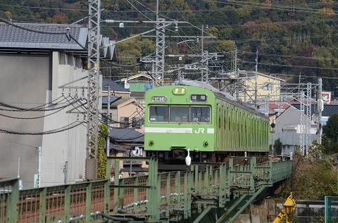DSC_7847.jpg