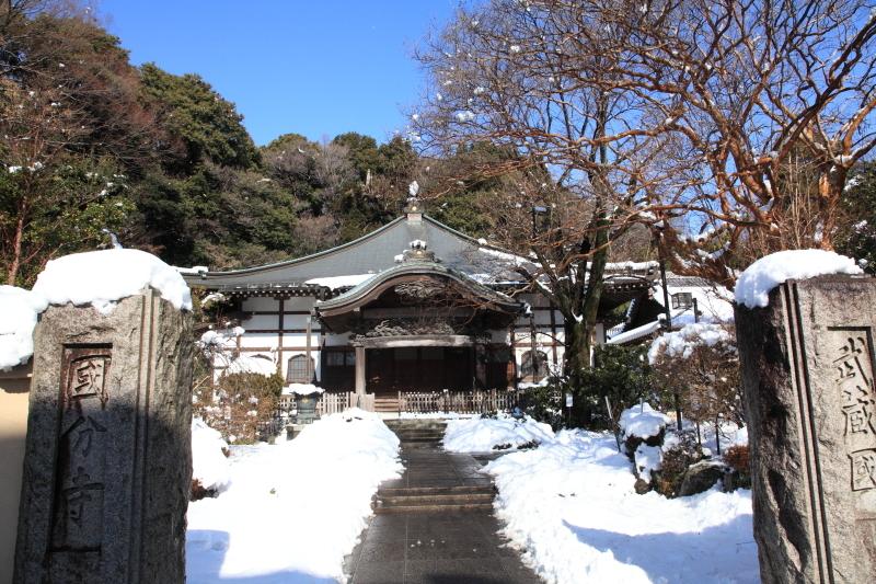 国分寺の雪景色 - 58