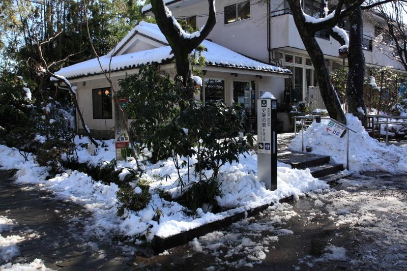 国分寺の雪景色 - 67