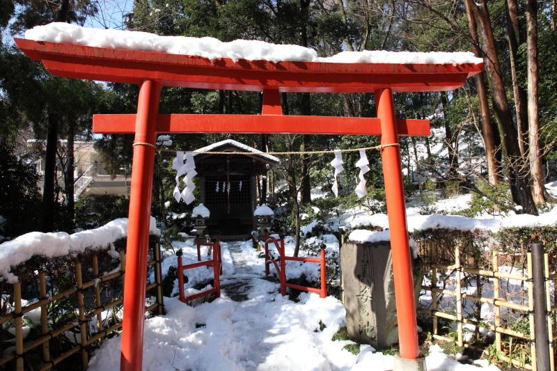 国分寺の雪景色 - 74