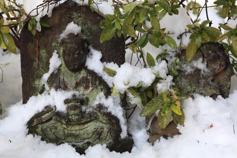 国分寺の雪景色 - 45