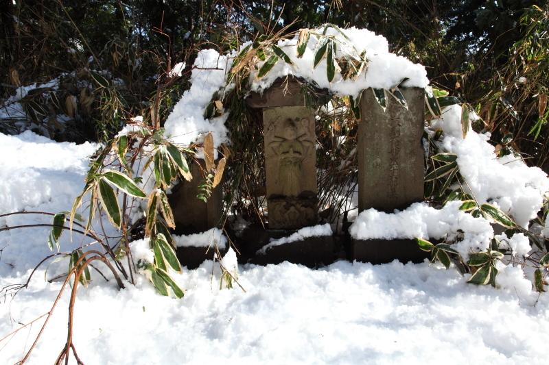 国分寺の雪景色 - 19