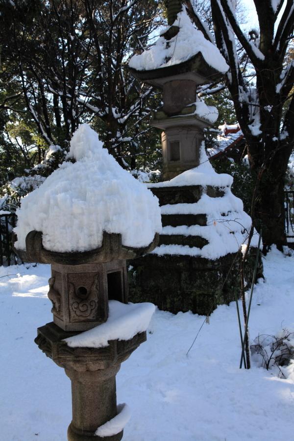 国分寺の雪景色 - 47