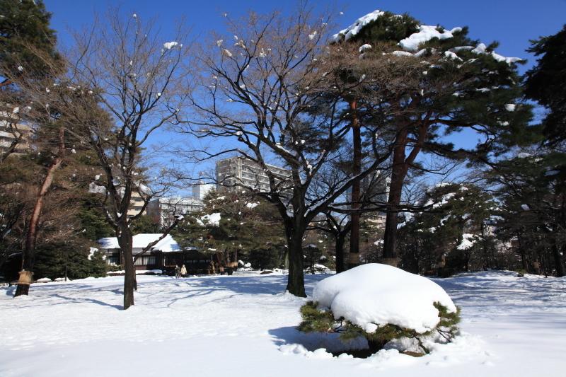 国分寺の雪景色 - 94