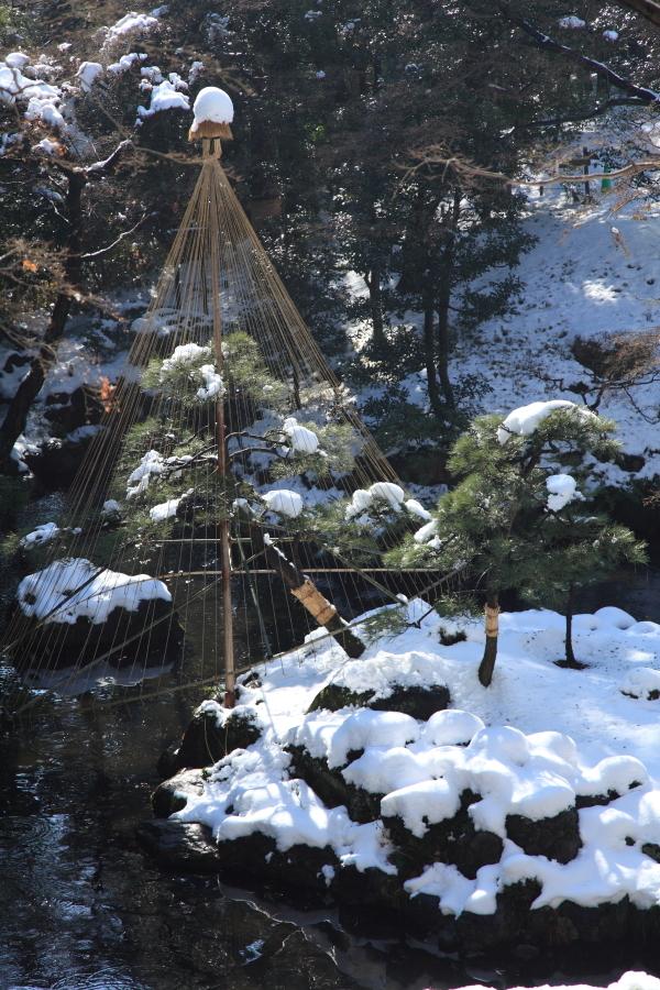 国分寺の雪景色 - 117