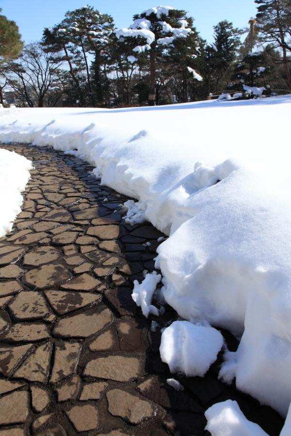 国分寺の雪景色 - 97