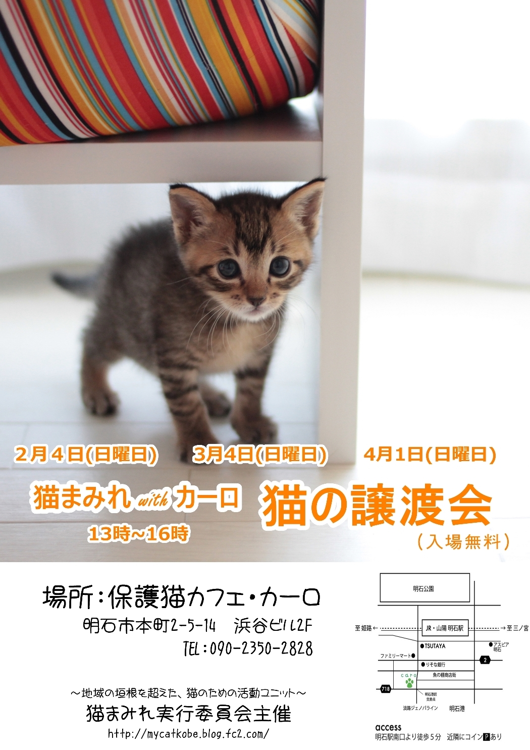 猫まみれ譲渡会ポスター2月3月4月