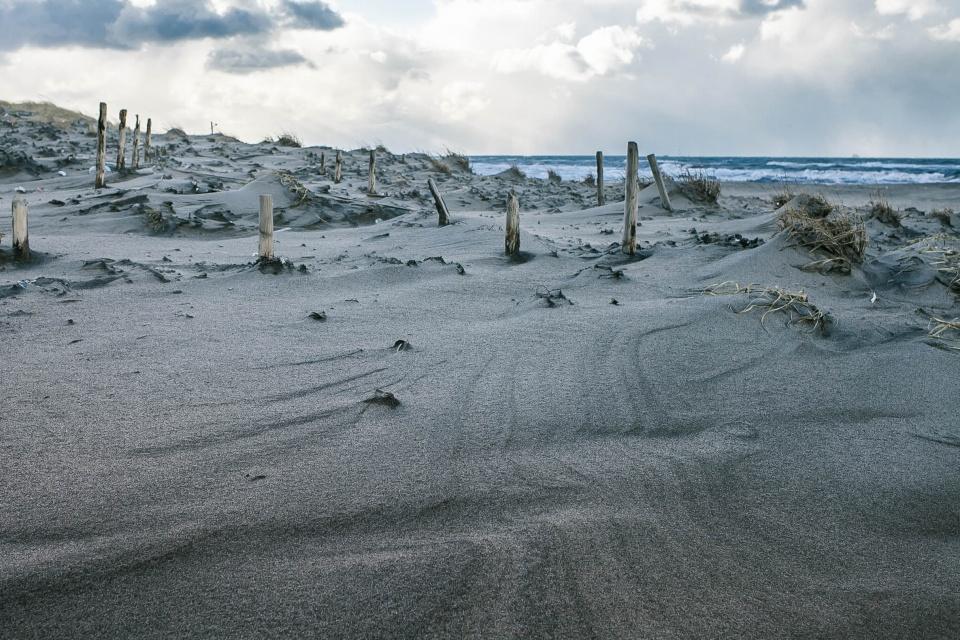 ◇ 太夫浜景色 - 冬来たりなば春遠からじ2.0 Daily