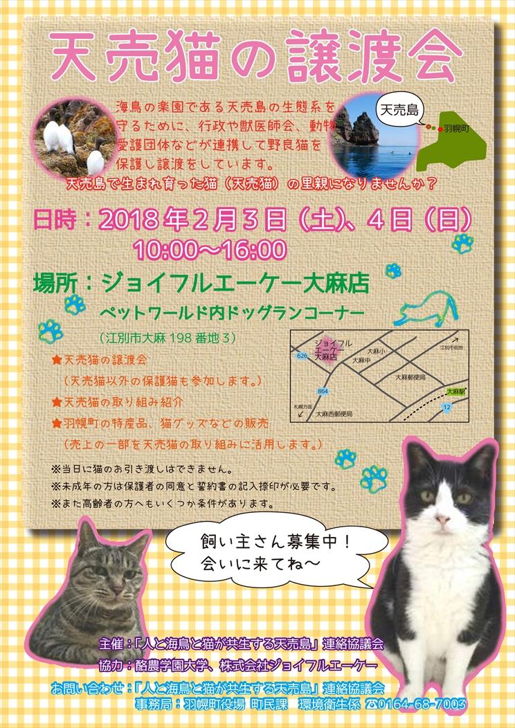 180203-04ジョイフルAK譲渡会_完成_R